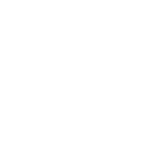 Institute of International Education Seal